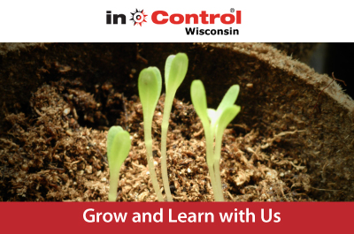 Grow and Learn with Us - image of young sprouts growing toward the light
